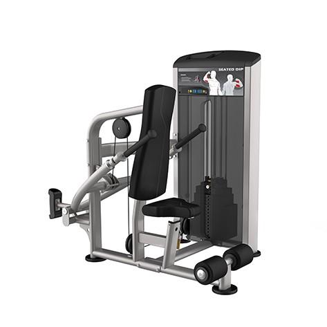 Aparat Presa Triceps IE 9517