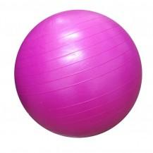 Minge de aerobic pentru sala 55cm DY-GB-070-55