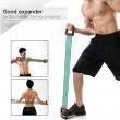 Extensor fitness cu 5 corzi elastice